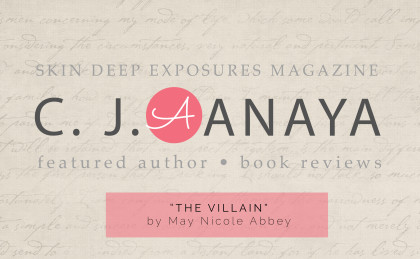 The Villain: Book Review