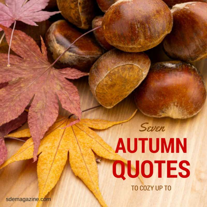 7 Autumn Quotes To Cozy Up To