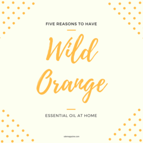 5 Reasons To Have Wild Orange Essential Oil At Home
